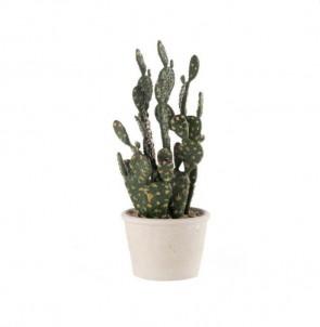 Dekorační kaktus Prickly pear č.1